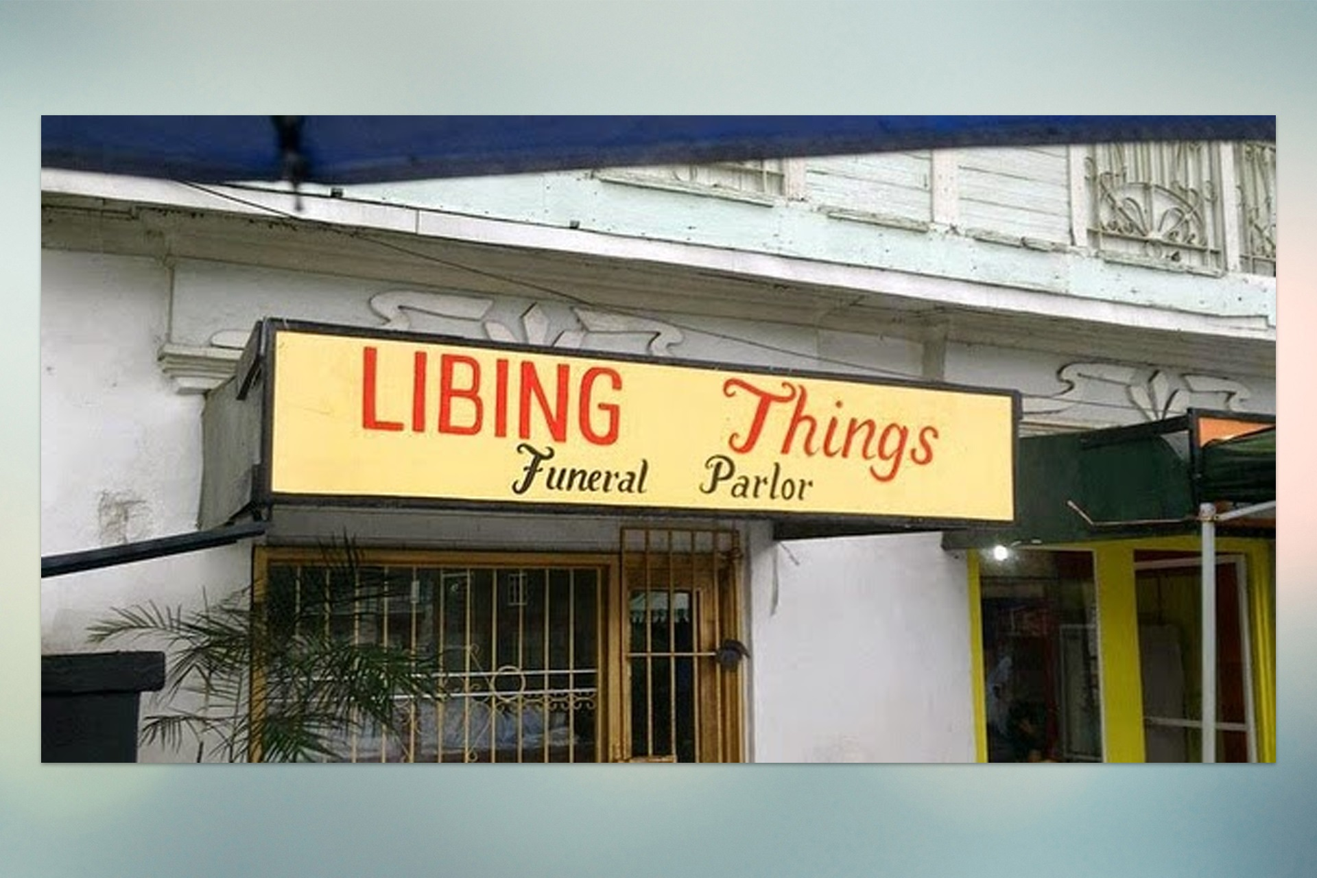 Funny Signages Libing Things